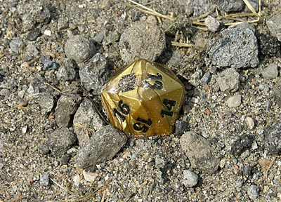 20 sided die in spark